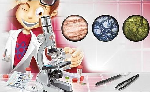 Usar microscopios para niños