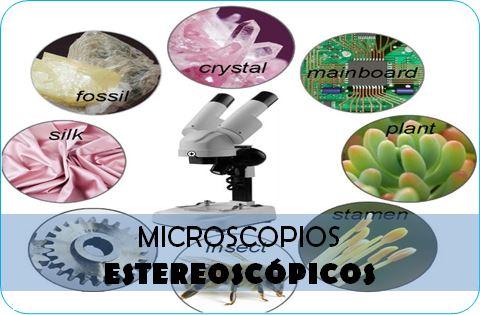 Los mejores microscopios estereoscópicos