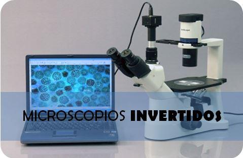 Los mejores microscopios invertidos